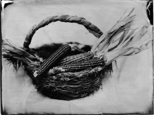 collodion_corn