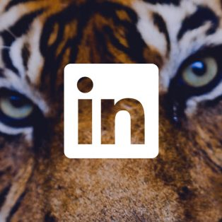 Content on LinkedIn how finance brands can win back trust
