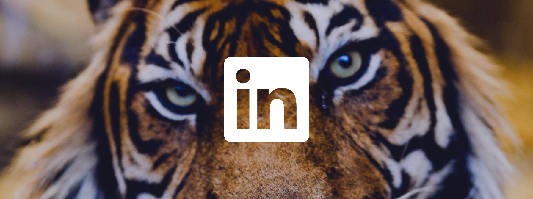 Content on LinkedIn: finance brands win back trust header