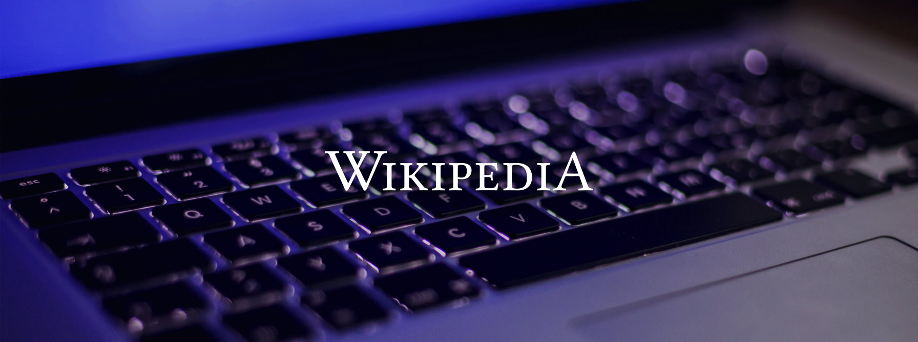 wikipedia_for_finance_brands_banner header