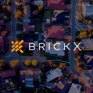 The BRICKX story